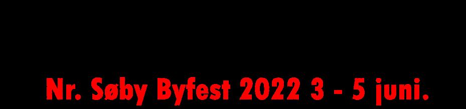 nsbyfest.dk